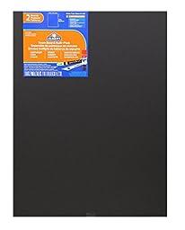 Elmer\'s Foam Boards, 18 x 24 Inches, Black/Black Core, 2-Count (950026)