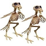 Plastic Bird Skeleton- Set of 2 - Halloween Decoration