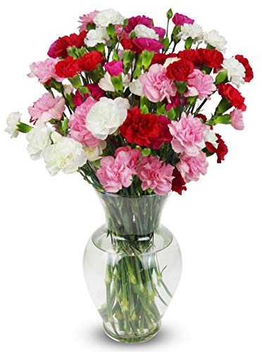 Benchmark Bouquets 20 stem Rainbow Mini Carnations, With Vase (Fresh Cut Flowers)