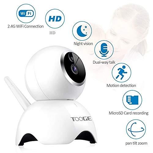 Buy dog monitor camera