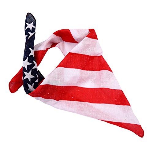 BinaryABC 4th Of July Flag...