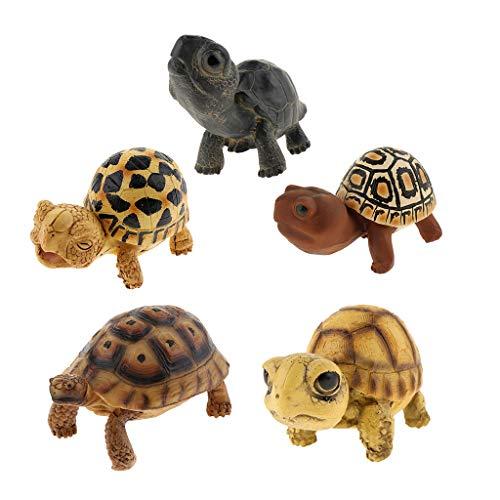 (Kesoto 5Pcs Acrylic Resin Simulation Fake Turtle Tortoise Aquarium Fish Tank Decoration Turtle Crawling Furnishing Articles)