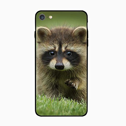 iPhone 6/6S Case Slim-Fit Anti-Scratch Shock Proof Print TPU Case for iPhone 6/6S (4.7 inch) - Baby Raccoon]()