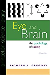 Eye and Brain