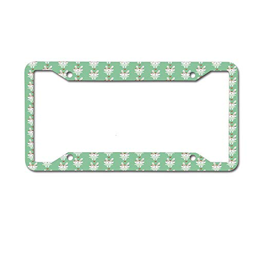 Dinzisalugg Custom Aluminum Metal License Plate Frame Tag Holder Cute,Cute Baby Rabbits with Dotted Dresses Flowers on Their Heads and Hearts License Plate Frame 4 Holes and Screws