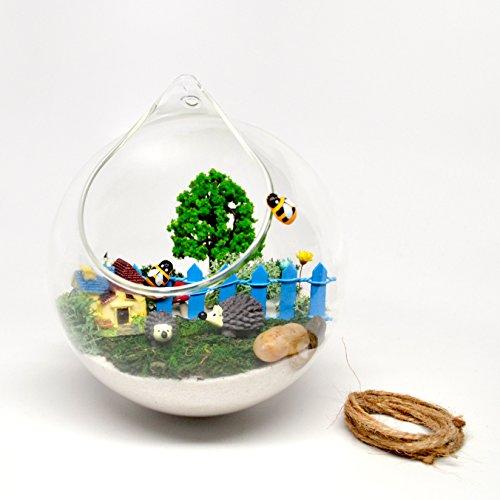Pixie Glare Hanging Terrarium Miniature Hedgehog Garden (Blue) by Pixie Glare