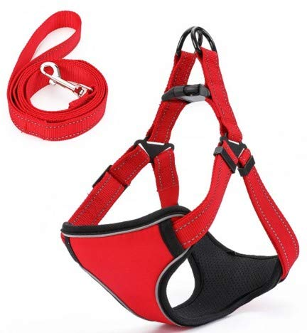 Red TangFei Pet Chest Strap with Reflective Traction Rope Dog Chain Dog Leash Teddy golden Hair Small Medium and Large Dog pet (color   Red)