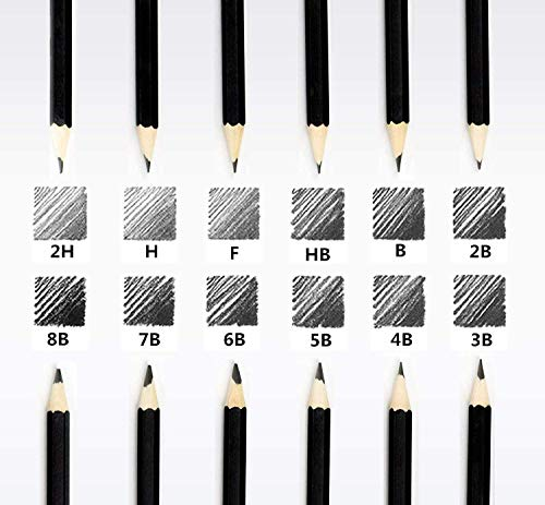 Professional Drawing Sketch Pencils Set of 12, Medium (8B - 2H), Artist Pencils for Beginners & Pro Artists,Ideal for Drawing Art, Sketching, Shading