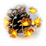 Impress Life Fall Decortive String Lights, Squirrel Festive Lights Battery Operated 10 ft 40 LEDs with Remote Control for Autumn, Christmas, DIY Home Party, Holiday Wedding, Thanksgiving Decorations