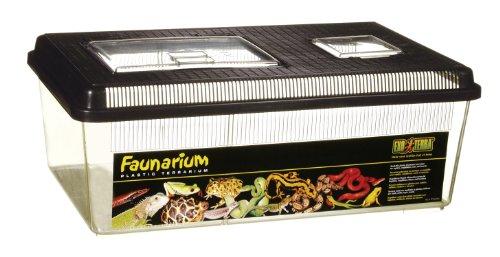 Exo Terra PT2310 Faunarium flach gross Reptilienbehälter