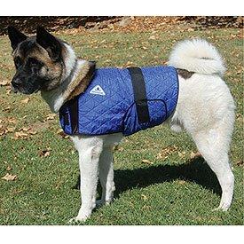 HyperKewl Evaporative Cooling Dog Coat, Small, Blue, My Pet Supplies