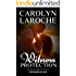 Witness Protection (Defenders of Love Book 1)
