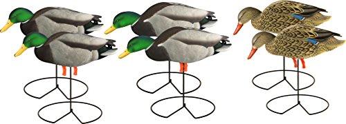 - Avery Hunting Gear PG Mallard FB-Feeder W-Flocked Drake Heads (1/2 Dozen)