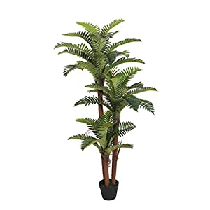 AMERIQUE Gorgeous 5 Feet Boston Fern Tree Artificial Silk Plant with UV Protection, Pre Nursery Pot, Feel Real Technology, Super Quality, Green 72