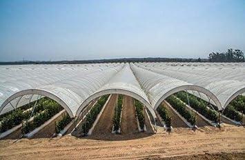 16 Wide X 25 Long Gt4 6 Mil Uv Treated Standard Clear Greenhouse Film