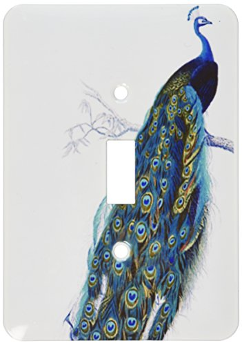 3dRose lsp_113188_1 Vintage Peacock Art Blue and Green Elegant Stylish Bird on Branch Beautiful Tail Feathers White Light Switch Cover