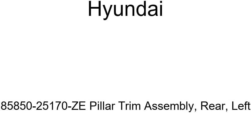 Genuine Hyundai 85850-25170-ZE Pillar Trim Assembly Rear Left