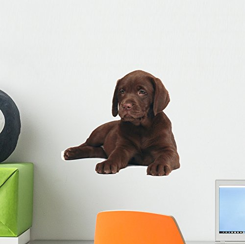 e Puppy Labrador Wall Decal Peel and Stick Animal Graphics (12 in W x 9 in H) WM121833 ()