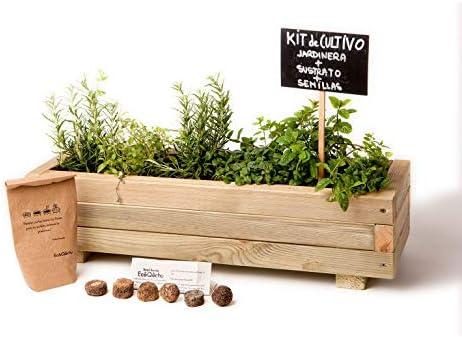 Kit de cultivo en jardinera minimalista para infusiones y cócteles ...