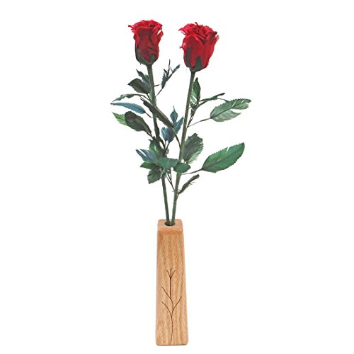 Galleon 18th Wedding Anniversary Gift 2 Stem Feather Roses With Vase