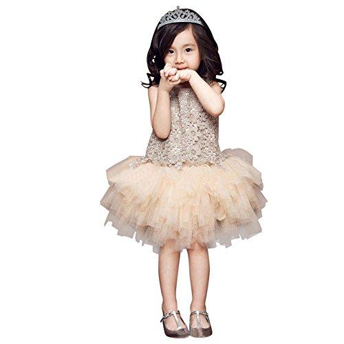 EFINNY Toddler Girls Lace Princess Dress Sundress Wedding Party Tulle Tutu Skirt