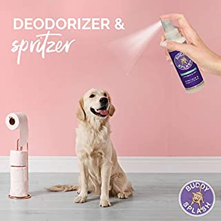 Buddy Biscuits  Splash Dog Deodorizer & Conditioner, Easy Spray On with Botanical Extracts, Lavender & Mint 16 oz (15402)