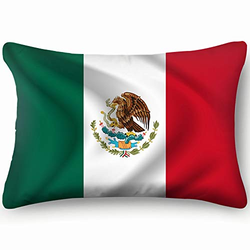Hpink Decorative Pillow Covers Mexican Flag Cloth Texture Abstract Cushion Case 20 x 30 Inch 51 x 76 cm