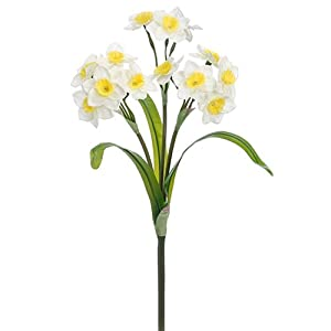 "SilksAreForever 14"" Silk Narcissus Daffodil Flower Bush -White/Yellow (Pack of 12) 66"