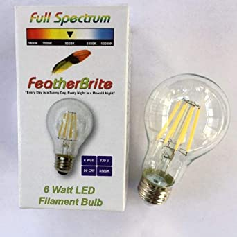Amazon.com: FeatherBrite - Bombilla LED de 6 W, 5500 K ...