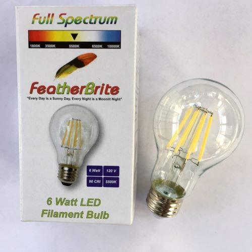 FeatherBrite 6w LED 5500 k Full Spectrum Bulb-Daytime