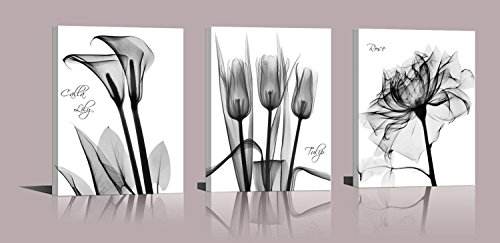 Flower Tulips Pictures (Abstract Flower Canvas Print Set Of 3 Lilies Tulips Roses Painting Print Floral Poster Gray Black White Flower Modern Design Photo Girls Home Wall Decoration Art)