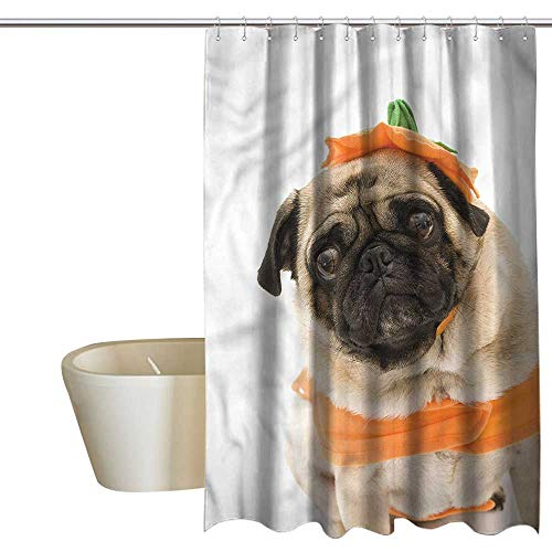 Denruny Shower Curtains for Bathroom Coral Turquoise Pumpkin,Pug Costume Trick Treat,W48 x L84,Shower Curtain for Girls