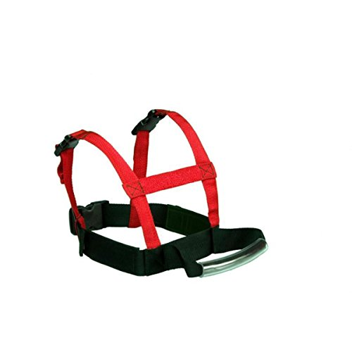 Lucky Bums Grip N Guide - Sports Harness - Red - New
