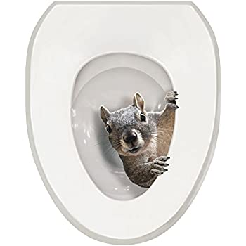 Amazon Com It S A Squirrel Toilet Seat Tattoo Decal