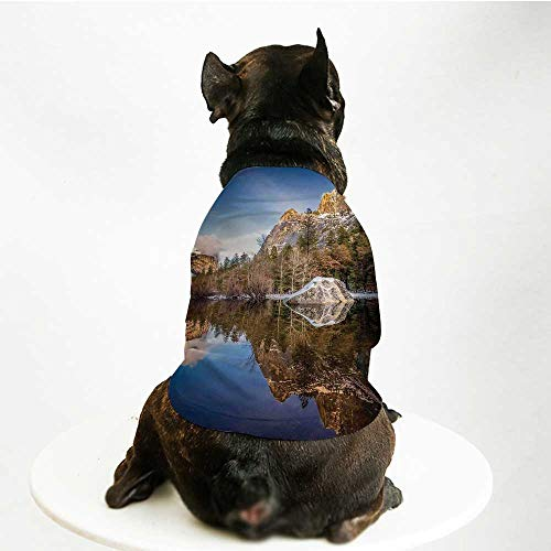 - YOLIYANA Yosemite Custom Pet Suit,Yosemite Mirror Lake and Mountain Reflection on Water Sunset Evening View Picture for Cats and Dogs,L