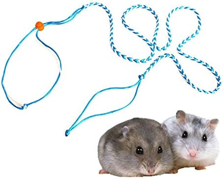 Hypeety Arnés ajustable para correa de rata, rata, rata, rata ...