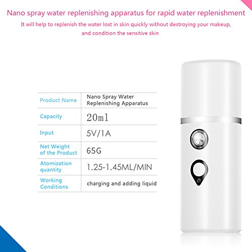 Oshide Nano Mist Sprayer Handheld Ionic Facial Spray