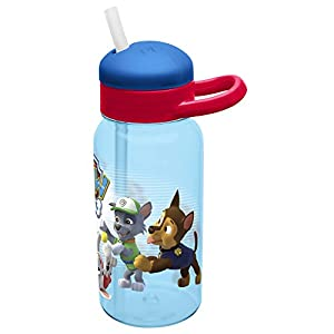 Zak Designs Zak! Designs Paw Patrol Reusable Water Bottle with Flip Out Silicone Straw, BPA-free & Break Resistant, 14 oz., Decorated