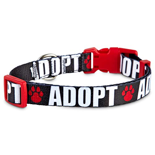 GOOD2GO Adopt Love Dog Collar