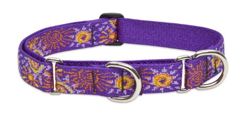 Lupine 1-Inch Sunny Days 15-22-Inch Martingale Combo Collar for Large Dogs, My Pet Supplies