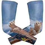 Forbidden City Cat Kitty Arm Sleeve Youth Adult Compression Elbow UV Skin Protection Sun Protection Sleeve for Cycling Basketball Baseball Driving