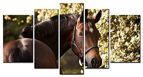 - Lwfoy Modern Art Animal Series 5 Piece Paintings a Reddish Brown Horse Near a Lush Tree Look Back Graciously Picture Home Decor Wall Art for Home Stretched and Framed