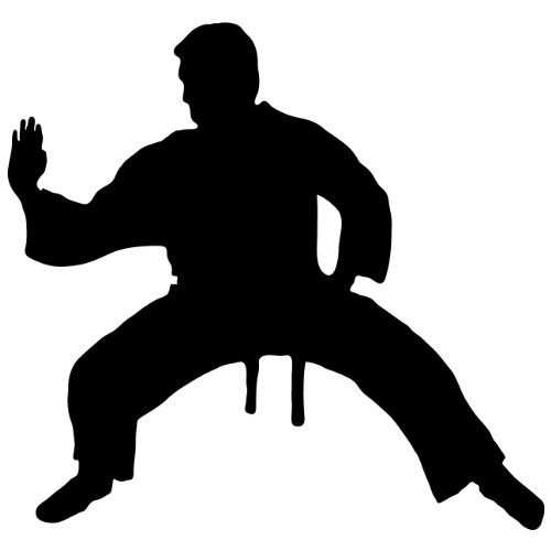 Martial Arts Silhouette - Martial Arts Wall Decal Sticker 16 - Decal Stickers and Mural for Kids Boys Girls Room and Bedroom. Karate Sport Wall Art for Home Decor and Decoration - Martial Art Kung Fu Taekwondo Silhouette Mural