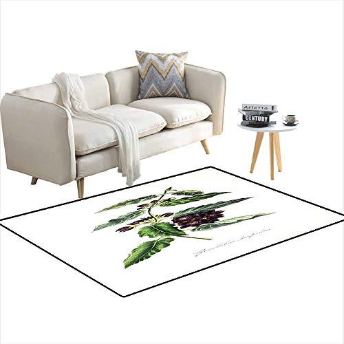 Kids Carpet Playmat Rug Botanical Illustration 4'x11'
