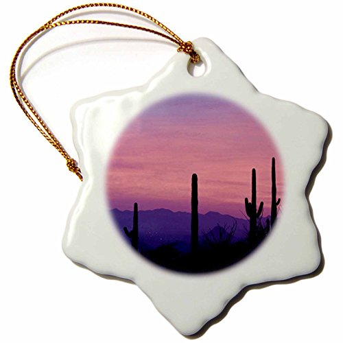 3dRose orn_87797_1 Arizona Tucson Avra Valley Tortolita Mountains Jaynes Gallery Snowflake Decorative Hanging Ornament, Porcelain, 3-Inch by 3dRose