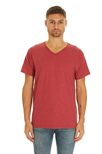 (Fruit of the Loom Men's V-Neck T-Shirt (2 Pack) (Tango Red Heather, Small))