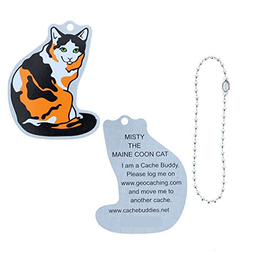 Misty the Maine Coon Cat Travel Tag