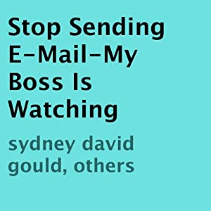 Stop Sending E-Mail - My Boss Is Watching Audiobook