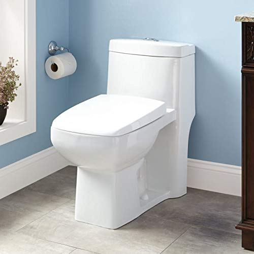 (Signature Hardware 415171 Winslow 1.6/0.8 GPF Siphonic One Piece Elongated Chair Height Toilet - Seat Included)