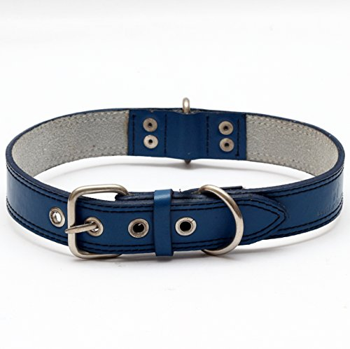 Premium Leather Collars with Stainless Steel Buckles (21